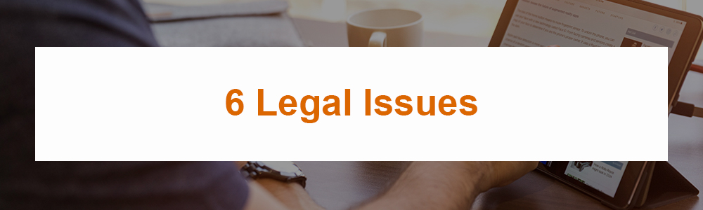 6 Legal Issues