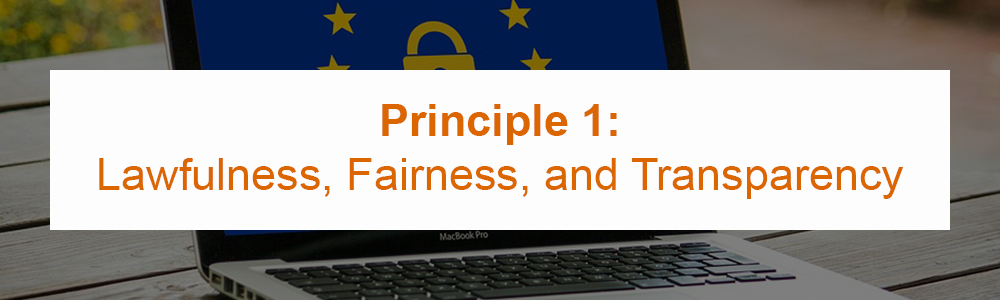 Principle 1: Lawfulness, Fairness, and Transparency